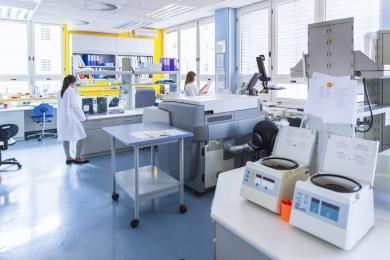 lab moving